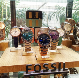 Fossil Boyfriend Spring 2015 Collection